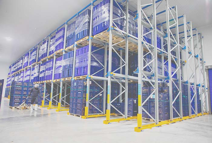 AR Racking combines several seismic-resistant storage systems for the new Emergent Cold plant (Video)